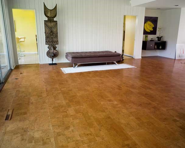 cork floor flooring options for pets